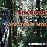 """You-must-not-only-aim-right,-but-draw-the-bow-with-all-your-might---Henry-David-Thoreau"